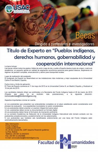 Becas pueblos indígenas copy